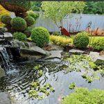 Où acheter un bassin de jardin?